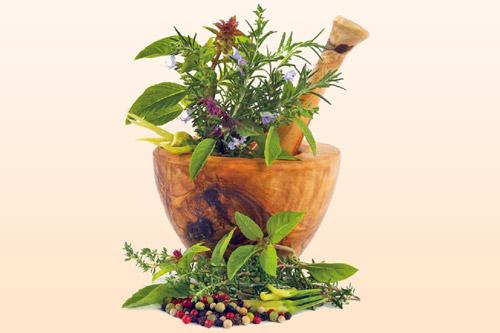 Травы, применяемые в медицине
