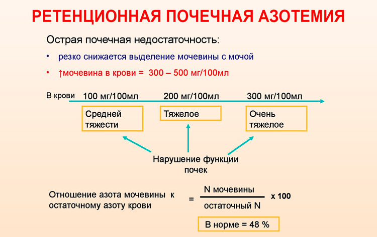 Ретенционная почечная азотемия