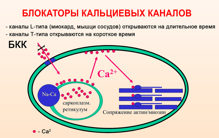 Изображение - Новые препараты от гипертонии tabletki-ot-gipertonii-novogo-pokoleniya-spisok_6