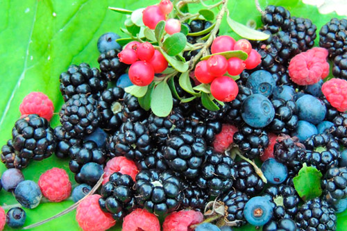 Ассорти из ягод