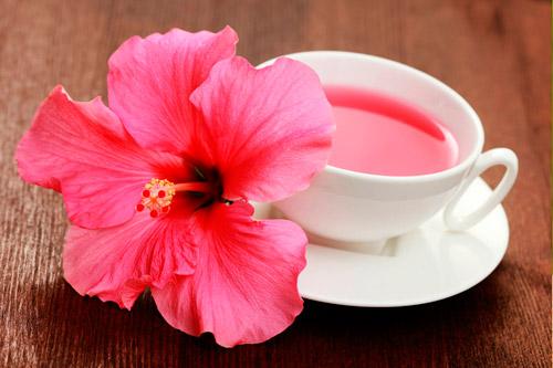 Чай из цветков гибискуса