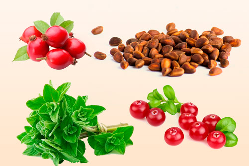 Плоды и травы