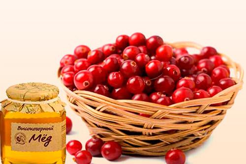 Ягоды клюквы с медом
