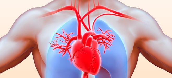 Что такое лабильность артериального давления