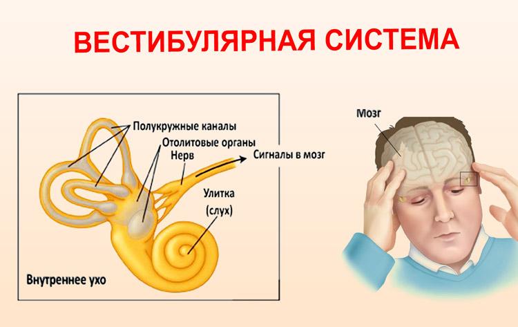 Тошнота при давлении, головокружение и рвота