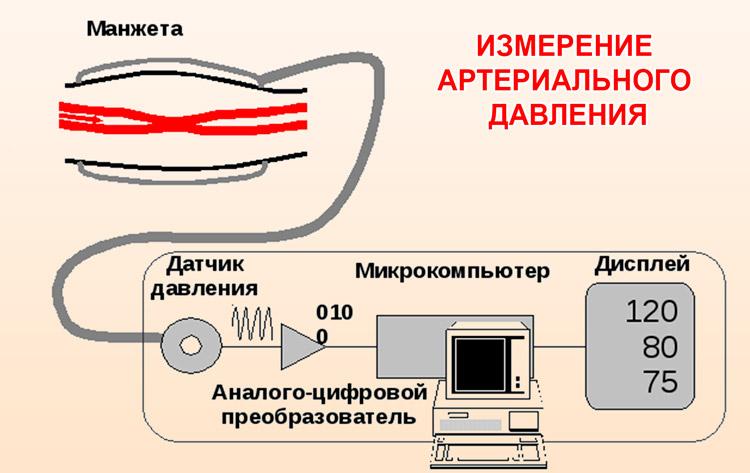 Метод измерения артериального давления