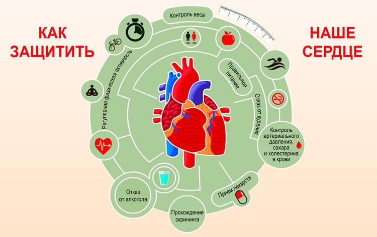 Как защитить сердце