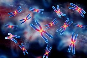 Хромосомные мутаций