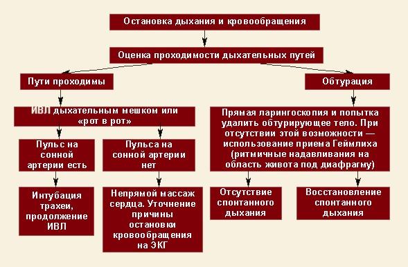 Протокол реанимационных мероприятий при клинической смерти: лечение, побочные эффекты, свечи, список