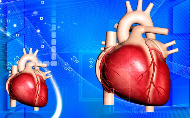 Что такое жидкость в сердце