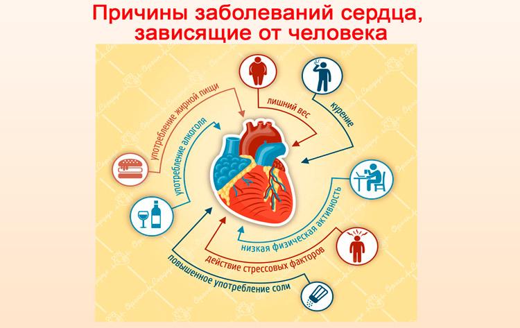 Причины заболеваний сердца, зависящие от человека