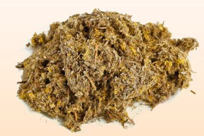 Трава сушеница