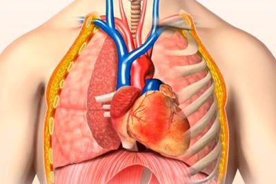 Лечение легочного сердца, симптомы и проявления