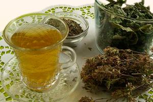 Чай из дягиля и зверобоя