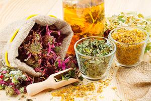 Настойка трав для лечения атеросклероза