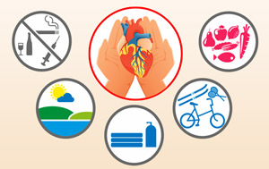 Сохранение здоровья сердца